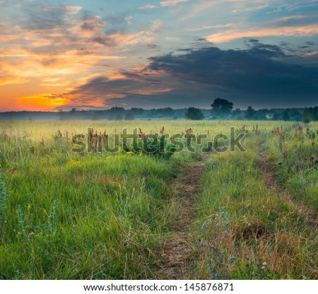 Landscape, meadow at sunset - stock photo