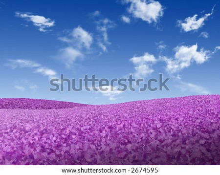Landscape - meadow full of violet flowers over blue sky with white clouds - stock photo