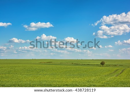 Landscape - meadows with sky and clouds over them. - stock photo