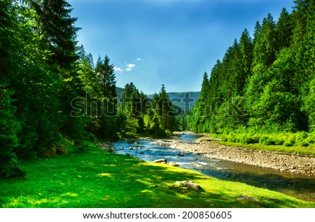 Landscape mountain river with trees and meadow in summer - stock photo