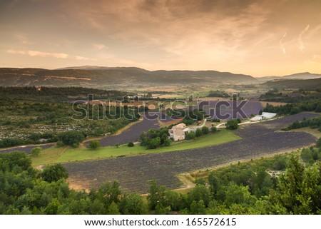 Landscape near village Sault before sunrise, Vaucluse, Provence, France - stock photo