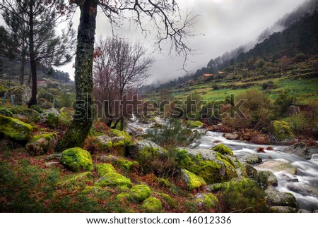 Landscape of a countryside scenery with trees and mossy rocks by a water spring - stock photo