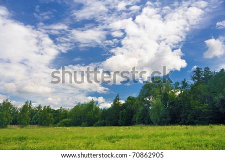 Landscape of a green field with trees - stock photo