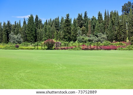 Landscape of a green field with trees and a bright blue sky - stock photo