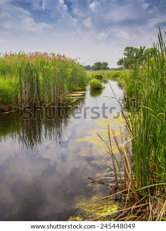 Landscape of a river with tall reeds growing on either side and a blue cloud filled sky reflected in the water - stock photo