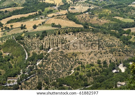 Landscape of agricultural field. - stock photo
