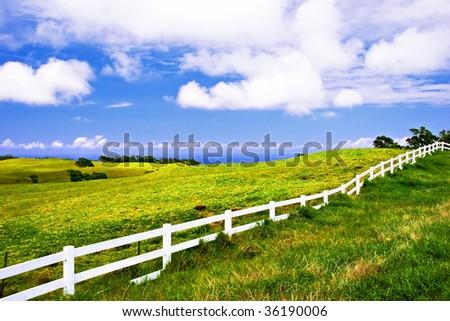 Landscape of Big Island. Hawaii. USA - stock photo
