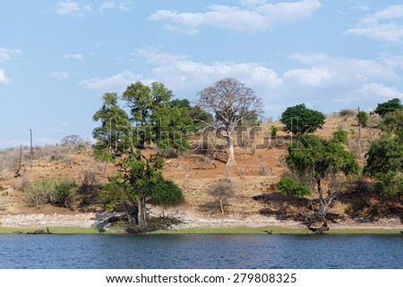 landscape of Chobe river in Botswana, view from boat - stock photo