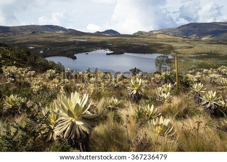 "Landscape of Colombian Andean mountains showing paramo type vegetation. The lake on the photo correspond is know as ""Laguna Verde""  Taken near Cogua, Cundinamarca-Colombia. - stock photo"