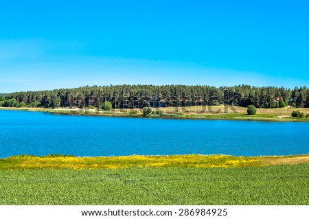 Landscape of fields of grain by the lake. Forest on the other side of the lake. - stock photo