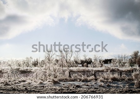 Landscape of frozen fence line and trees after an ice storm.  Room for copy space.  - stock photo
