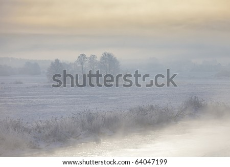 Landscape of frozen trees, fog and colorful sky. Morning scene. - stock photo