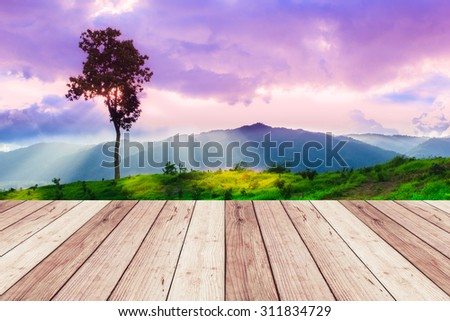Landscape of green grass field with sky and wood floor - stock photo