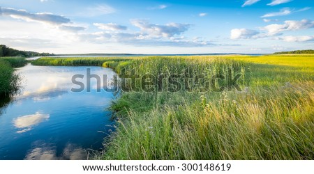 Landscape of green marshes and canals with beautiful reflections of clouds in blue water, and fields of yellow rapeseed in the background. Location: Swedish island of  Gotland in the Baltic Sea. - stock photo