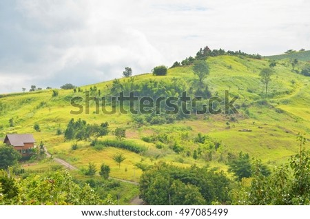 Landscape of green mountain
