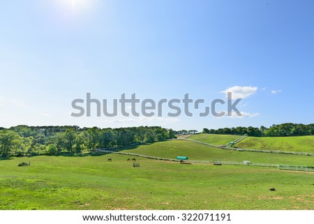 landscape of horse ranch with white fence in a sunny day - stock photo