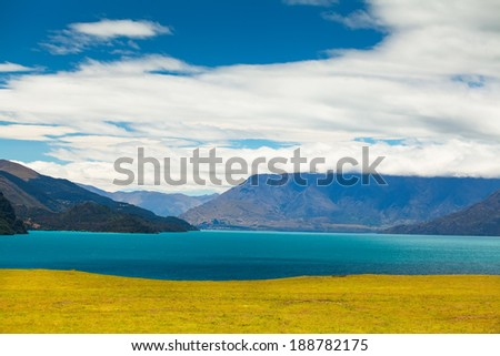 Landscape of lake Wakatipu with meadow of yellow flowers, rape near Glenorchy in the south Island, New Zealand. - stock photo
