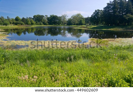 landscape of marshes and lake surrounded by trees of arboretum in lisle illinois - stock photo