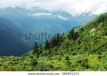 landscape of mountain forest and valley