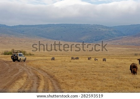 Landscape of Ngorongoro Conservation Area, Tanzania - stock photo