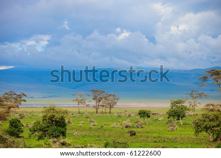 Landscape of Ngorongoro crater area in Tanzania. Elephants and flamingos can be found on this photo.