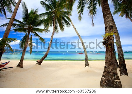 Landscape of perfect tropical beach with palm trees - stock photo