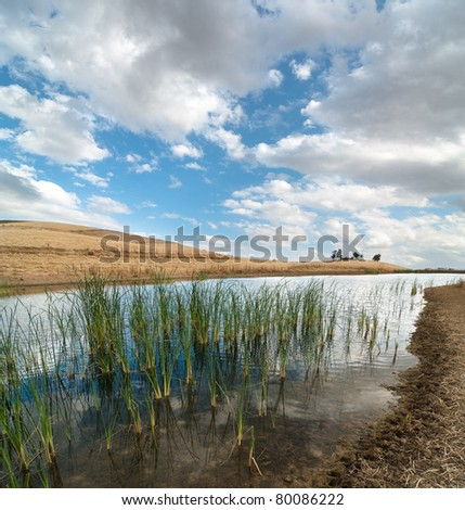 landscape of reflected clouds over marsh