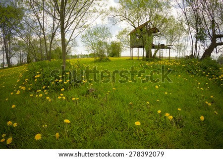 landscape of rural dandelion meadow with tree house, fisheye lens distortion - stock photo