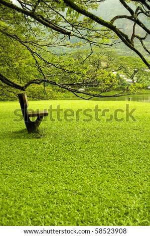 Landscape of single chair beside lake garden - stock photo