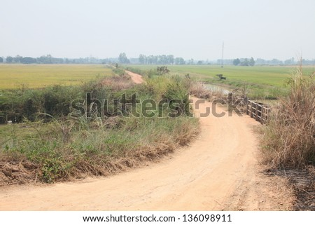 Landscape of small river in tropical region - stock photo