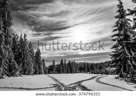 Landscape of snow-covered trees on a mountain trail in winter. Beskidy Mountains, Gorce, Turbacz, Poland. - stock photo