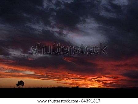 landscape of sunset with cloudy orange sky and a small lonely silhouette of tree - stock photo
