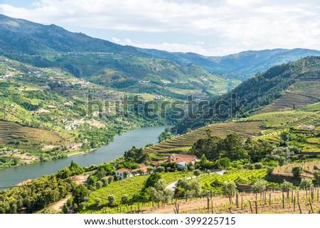 Landscape of the Douro river regionin Portugal -  Vineyards - stock photo