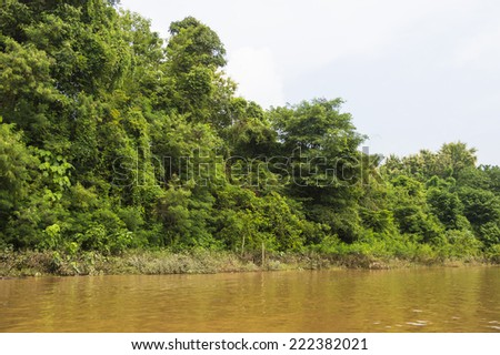 Landscape of the Mekong river coast in Asia - stock photo