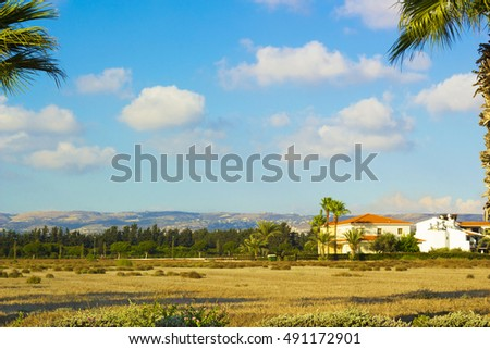 Landscape of town Paphos with houses, trees and mountains in background against blue sky, Cyprus. Photos warm colors of setting sun