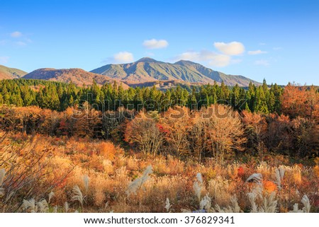 Landscape of trees turning color in autumn with high mountain - Senboku, Akita, Japan - stock photo