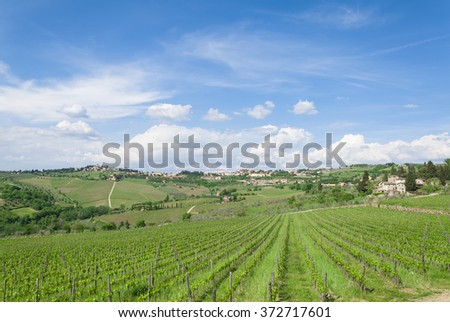 Landscape of Tuscan vineyar in a beautiful sunny day