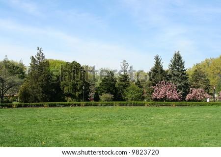 Landscape Photo of a Green Garden at Spring - stock photo