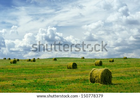 Landscape photo of rolled hay on a field - stock photo