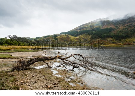 Landscape pic of a lone felled branch stranded on the shore of Loch Shiel, in Glenfinnan, near Fort William, Scotland. The rainy day and dramatic sky confers feelings of abandonment and loneliness. - stock photo