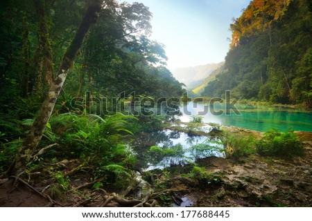Landscape rain forest National Park in Guatemala Semuc Champey at sunset - stock photo