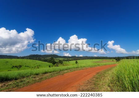 Landscape road and green grass field with bright blue sky. - stock photo
