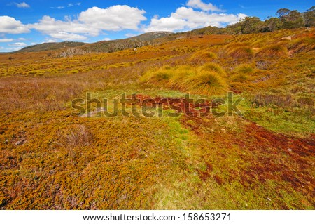 Landscape Scenery of Cradle Mountain National Park, Tasmania, Australia - stock photo