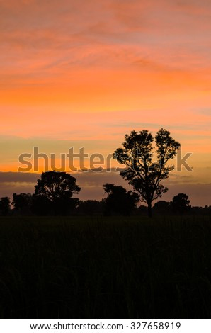 landscape silhouette at sunset with beautiful sky - stock photo