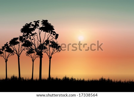 landscape silhouette of africa with setting sun