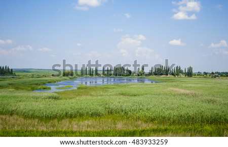 landscape sky with clouds and the lake overgrown reeds summer