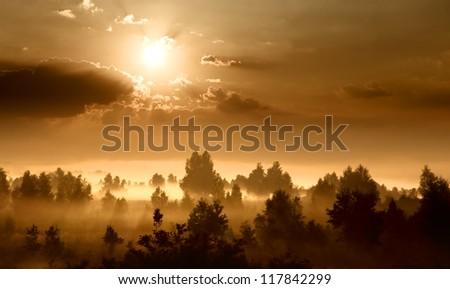 Landscape, sunny dawn, sunrays in fog - stock photo