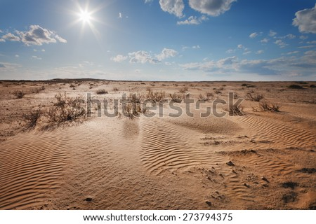 Landscape. The desert under a blue sky with clouds