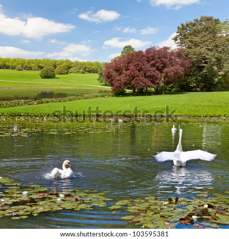 Landscape. The lake in the park. - stock photo