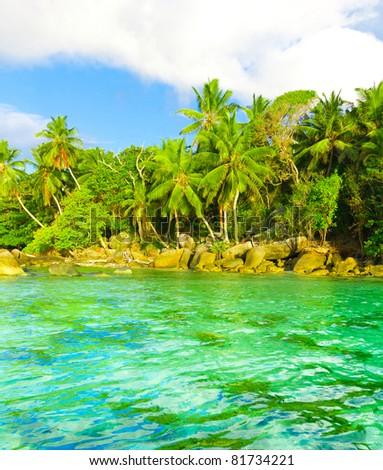 Landscape Tranquility Palms - stock photo